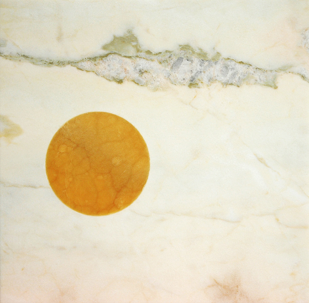 'Icon', daytime. Honey Onyx, Rosa Aurora. 2007